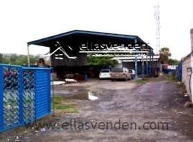 Terrenos en Renta, Centro en Pesqueria PRO2774