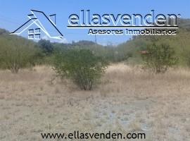 Terrenos en Venta, Valle del Rio en Allende PRO4283