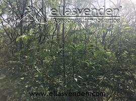 Terrenos en Venta, Hacienda de Rodriguez en Allende PRO4540